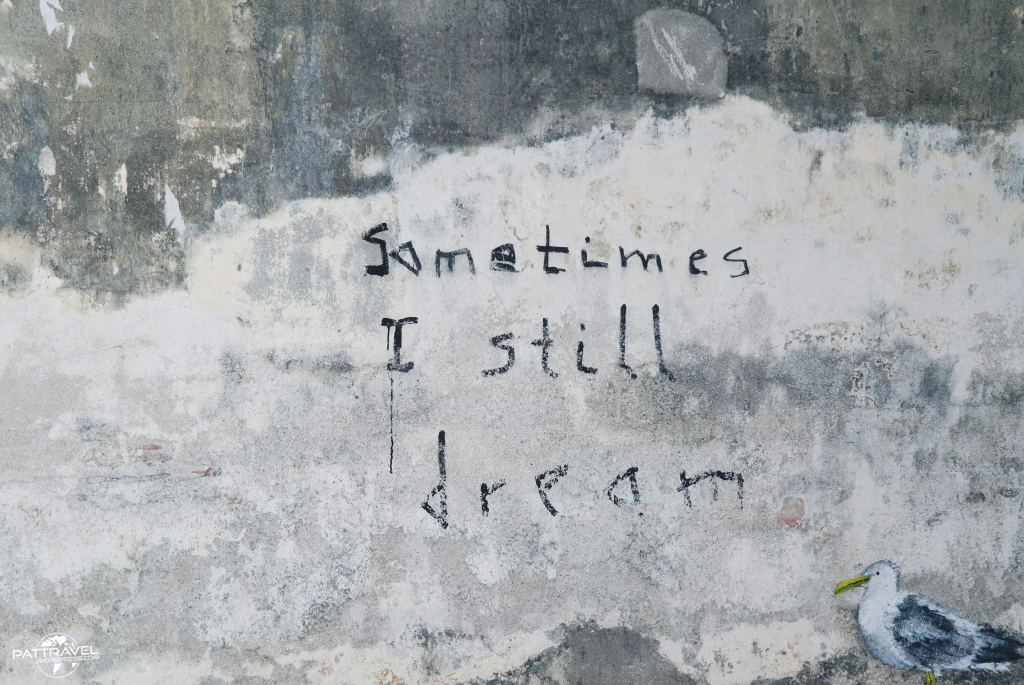 still dream